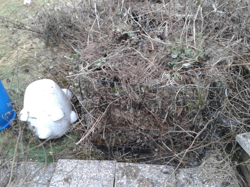 24 mars komposthaha