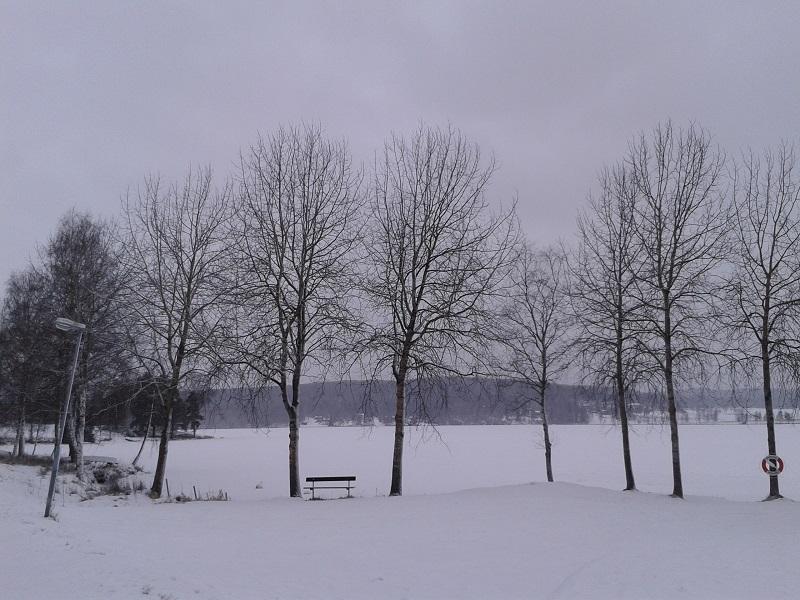 3 mars promenad 01
