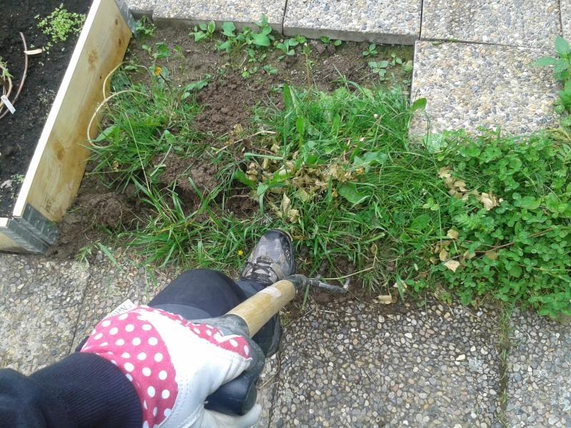 18 juni gräva